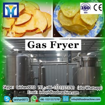 Extruder puff Food fryer machine