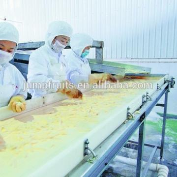 industrial small investment potato chips machinery on sale, from washing to packing,whole line equipment