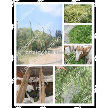 Factory price hey grass chaff cutter machine for animal feed with high quality (SKype:jeanmachinery)