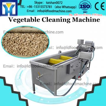 Industrial fruit and vegetable high pressure double bubble washing machine