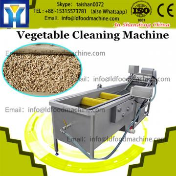 Hot sale vegetable air bubbles cleaning machine with good quality