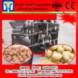Fruit and vegetable washing machine/mushroom washer /potato peeler for sale